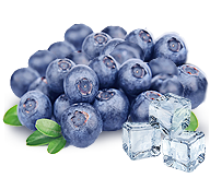 frozen blueberry