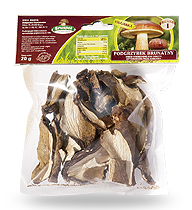 Bay Boletus dried